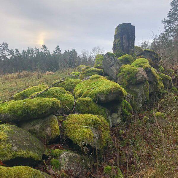 Åsa Waak Skogsbad
