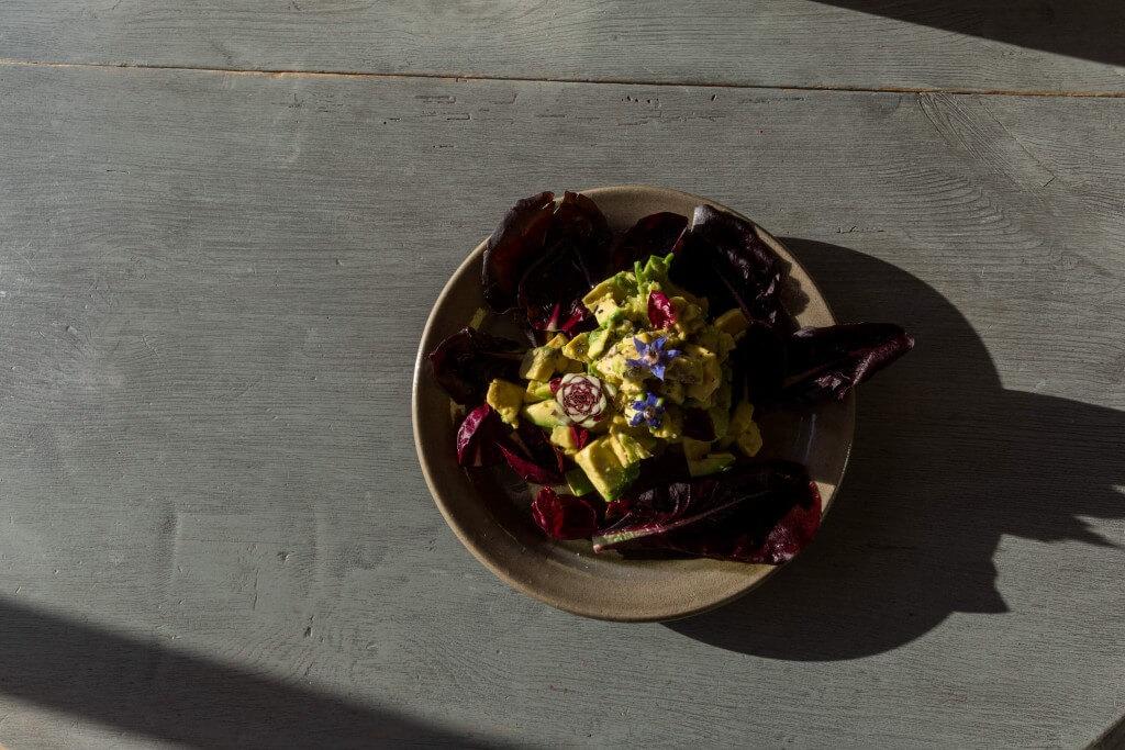 avokado sallad