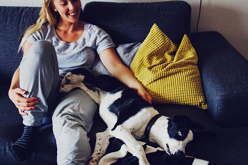 hunden_elsie_