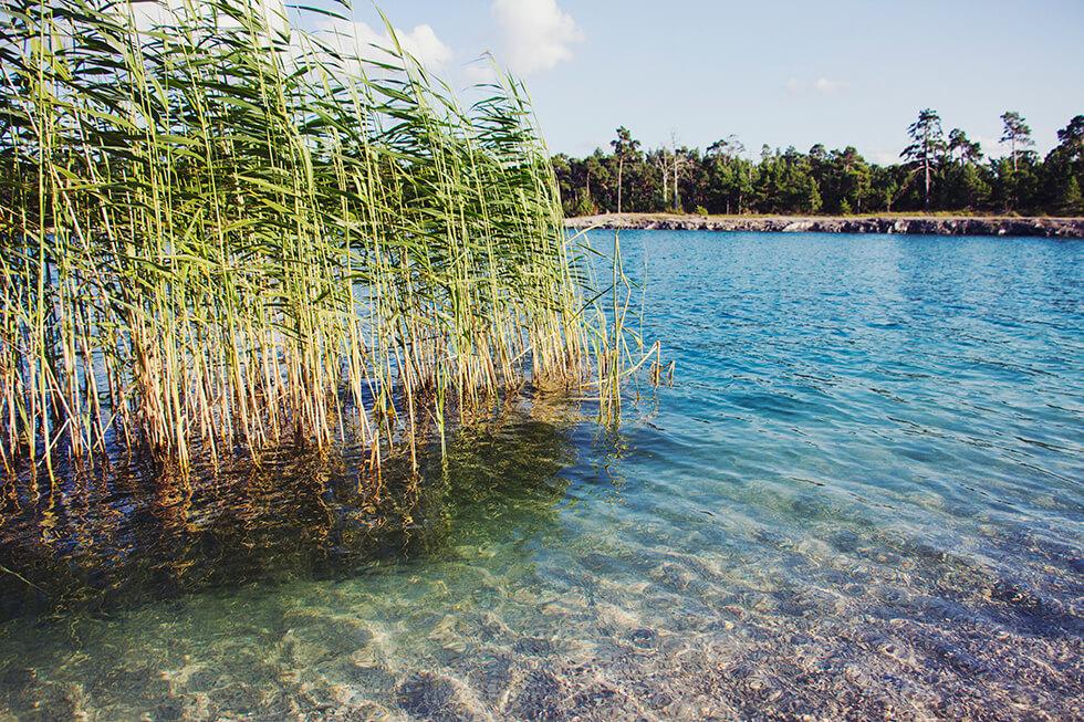 Gotland, kalkstensbrott