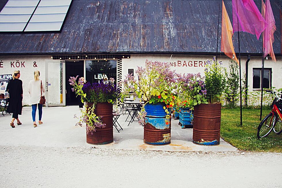 Leva kungslador Gotland
