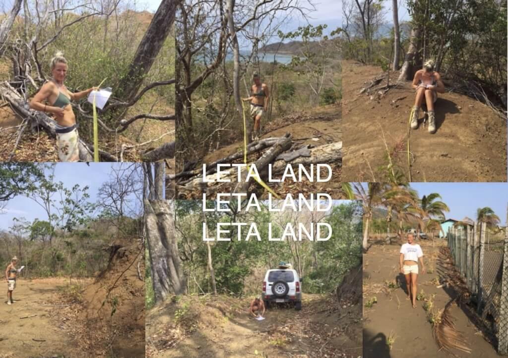 LETA LAND