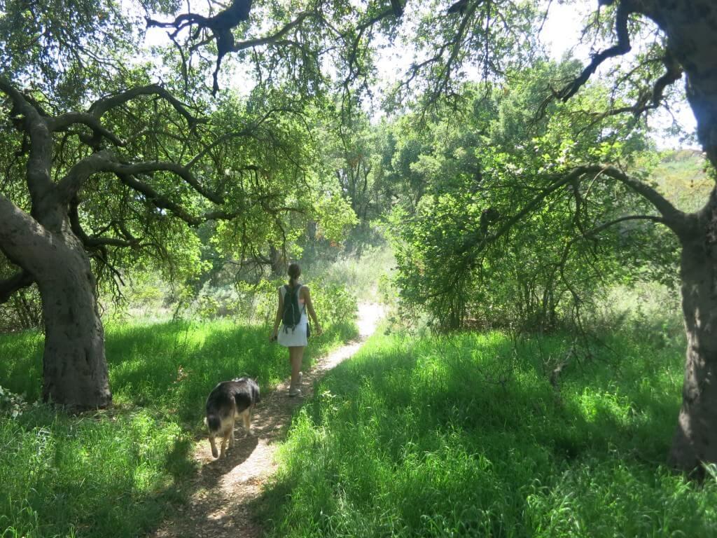 Hike Malibu 1