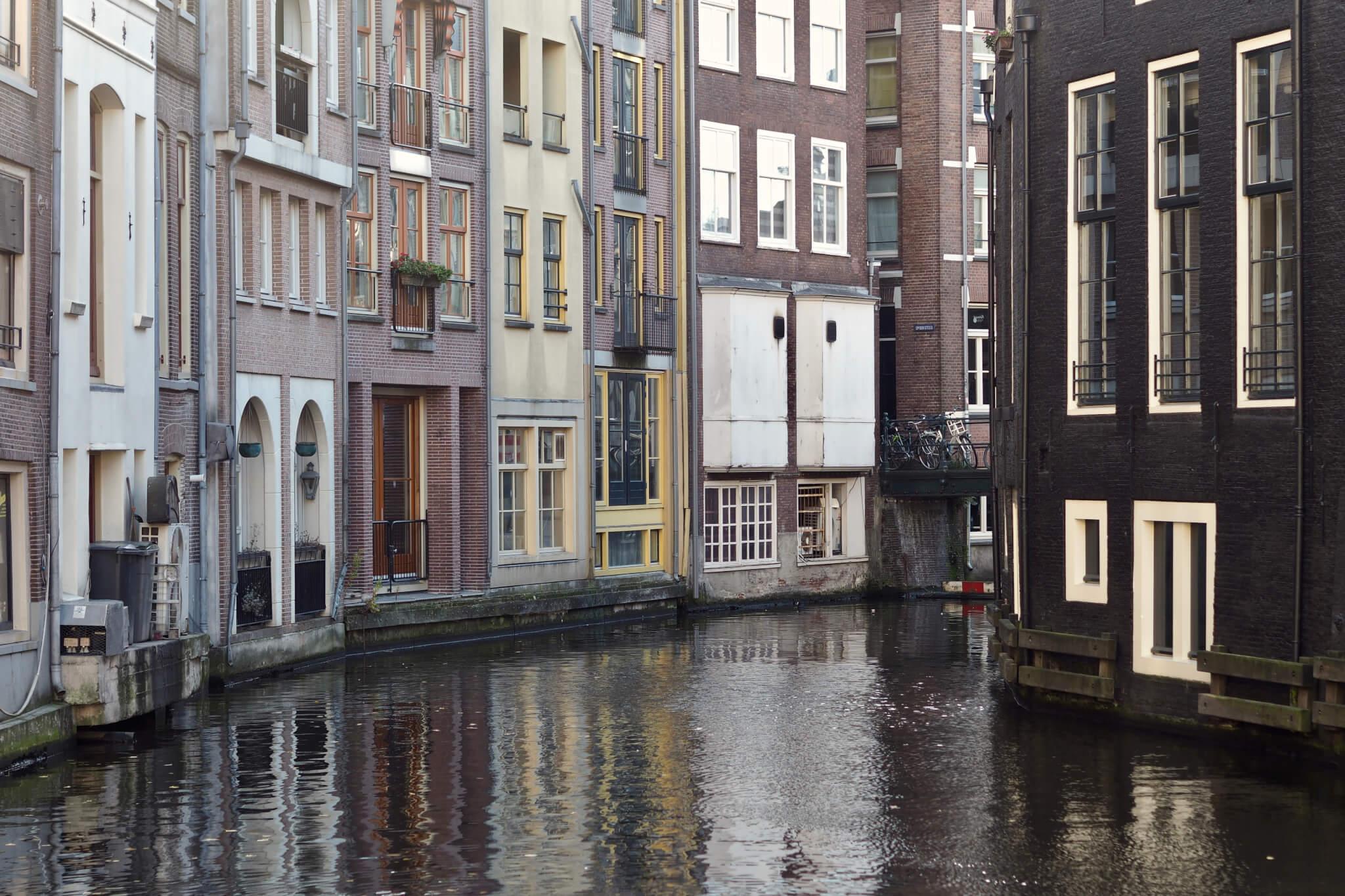Roots - vegansk och raw i Amsterdam