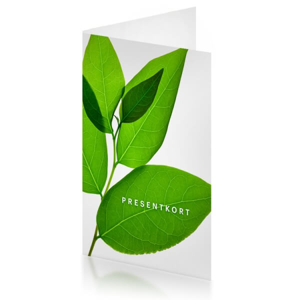 Naturligt Snygg Presentkort i Naturligt Snygg webbshop - 300 kr